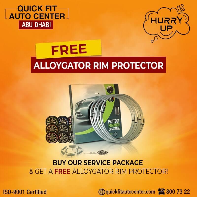 QuickFitAutoCenter-Free-Alloygator-Rim-Protector